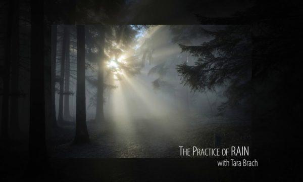Tara-Brach-leads-a-Guided-Meditation-The-Practice-of-RAIN